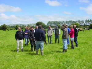Dairy Production Systems Ltd seminars and field days with consultants